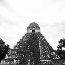 Tikal National Park #6 by Rachel Jeffrey