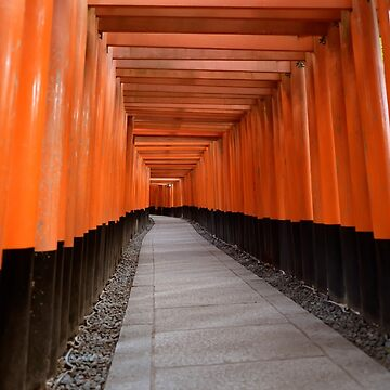 Senbon torii passage of Torii gates leading to the outer shrine of Fushimi Inari Taisha in Kyoto Japan art photo print by AwenArtPrints
