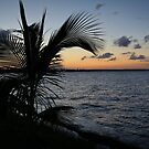 Belize City Sunset #3 by Rachel Jeffrey