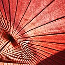 The Classic Japanese Parasol Shot #1 by J J  Everson