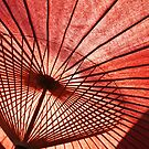 The Classic Japanese Parasol Shot #2 by J J  Everson