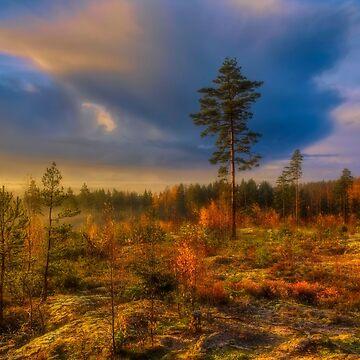 October morning 10 by wekegene