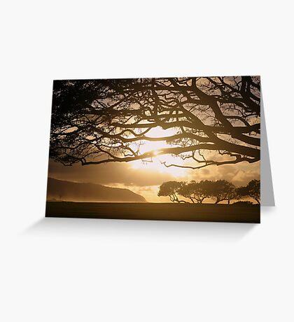 Magic Tree 1 Greeting Card