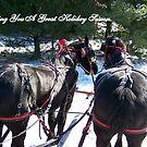 Two Horses Wish You a Happy Holiday Season by debbiedoda