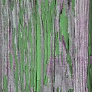 Rustic peeling paint in green by chihuahuashower