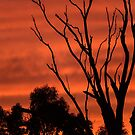 Murray Sunset 01 by Werner Padarin