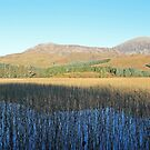 Beinn na Caillich From Suardal by ScotLandscapes