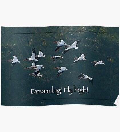 Dream Big! Fly High! Poster