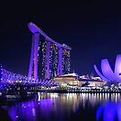 Violet Singapura by #Bizzartino by Bizzartino