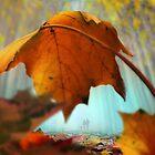 Stroll In Color by Igor Zenin