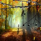 Droplets Of Autumn by Igor Zenin