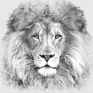 Lion of Judah BW by doggination