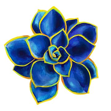Blue Rose Echeveria Succulent by artbysavi