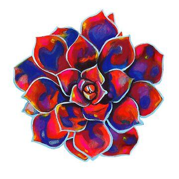 Red Blue Rose Echeveria Succulent by artbysavi