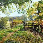 Autumn days and bridle ways  by Paula Oakley