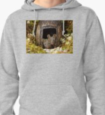two wild mouse at the  wood pile door  Pullover Hoodie