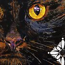 Bombay Cat by Michael Creese