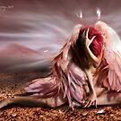 dried tears by navybrat