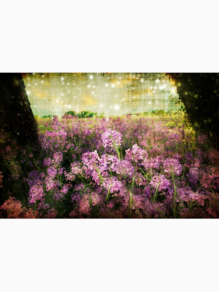 Dreaming in Purple  by BarnArtandMore