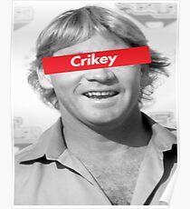 Steve Irwin Supreme Crikey Poster