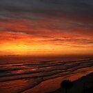 Sunrise Surprise by Cheri Bouvier-Johnson