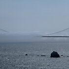 Another Foggy Day In San Francisco by GedTKirk