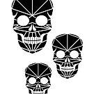 Skulls in polygonal style by alijun
