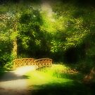 Bridge in the Park by Dee143