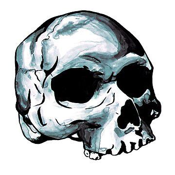 Human Skull by srw110