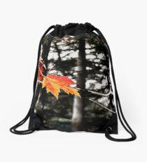 Lincoln Woods Leaves Drawstring Bag
