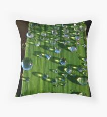 Frost Melt Throw Pillow