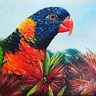 Mojo the Rainbow Lorikeet by Skye Elizabeth  Tranter