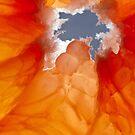 Grapefruit II by Inés Montenegro