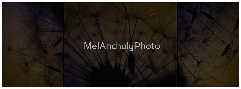 - please don't blow - by MelAncholyPhoto