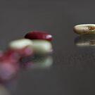 Beans VIII by Inés Montenegro