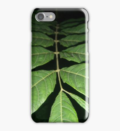 Fading Fronds iPhone Case/Skin
