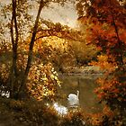 Basking in Autumn by Jessica Jenney