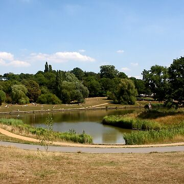 Hampstead Heath, London  by aodhain