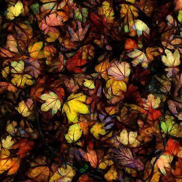 Late October Leaves by bloomingvine