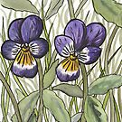 Wild Pansy by Ronan Crowley