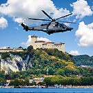 Low altitude helicopter by nicolagiordano