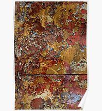 Concrete Lichen Poster