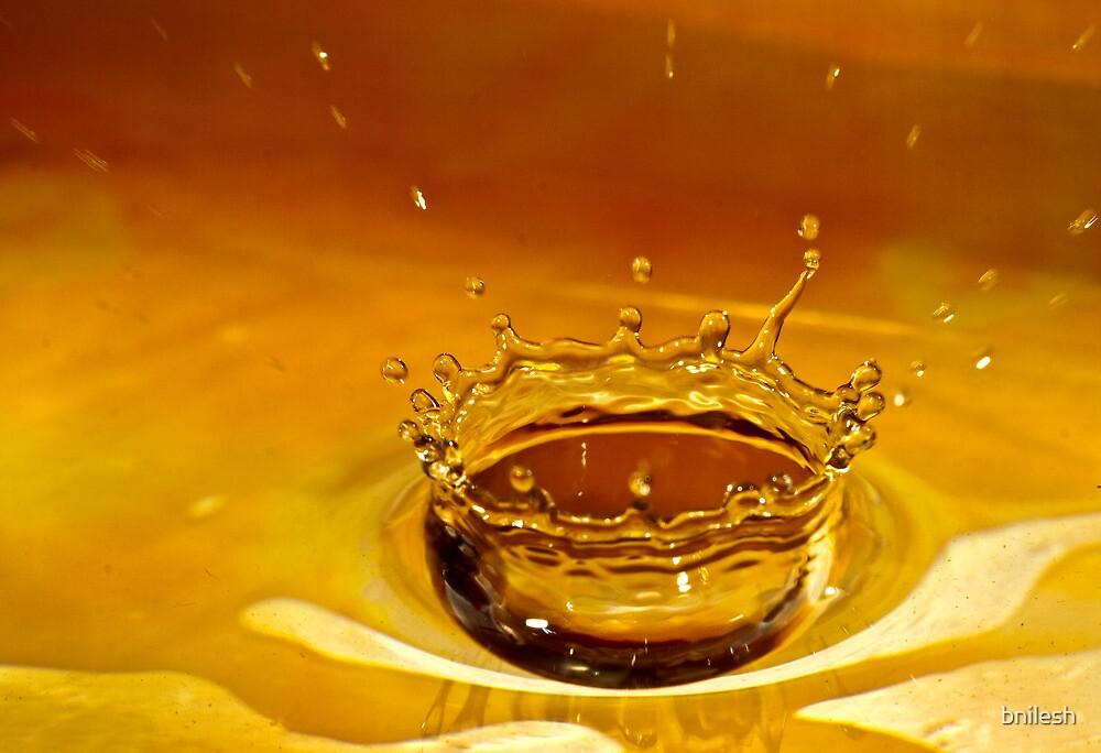 Water Crown by bnilesh