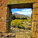 Through The Window by marilyn diaz