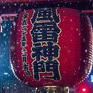 Asakusa's Kaminarimon in the Snow by TokyoLens
