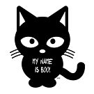 My Name is Boo!  by kj dePace'