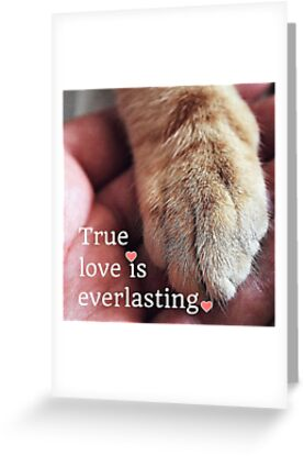 True love is everlasting. by Kamira Gayle