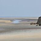 Low Tide - Darwin's Dripstone Cliff Shoreline by chijude