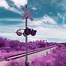 Train Crossing by Adam Nixon