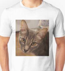 Ozzy the kitten Unisex T-Shirt